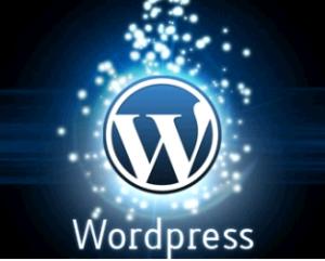 wordpress-3-1-11.png.rb_1